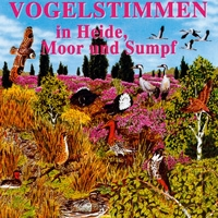 Vogelstimmen in Heide, Moor und Sumpf